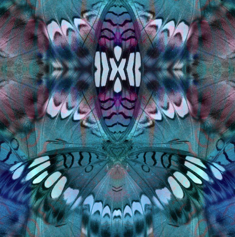 91aaa0f95366a Blue Butterfly Yoga Leggings - Love Her Leggings